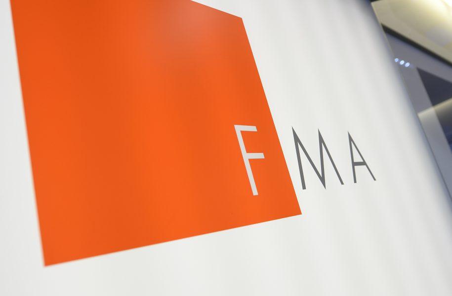 FMA-Geldwäsche-Prüfung