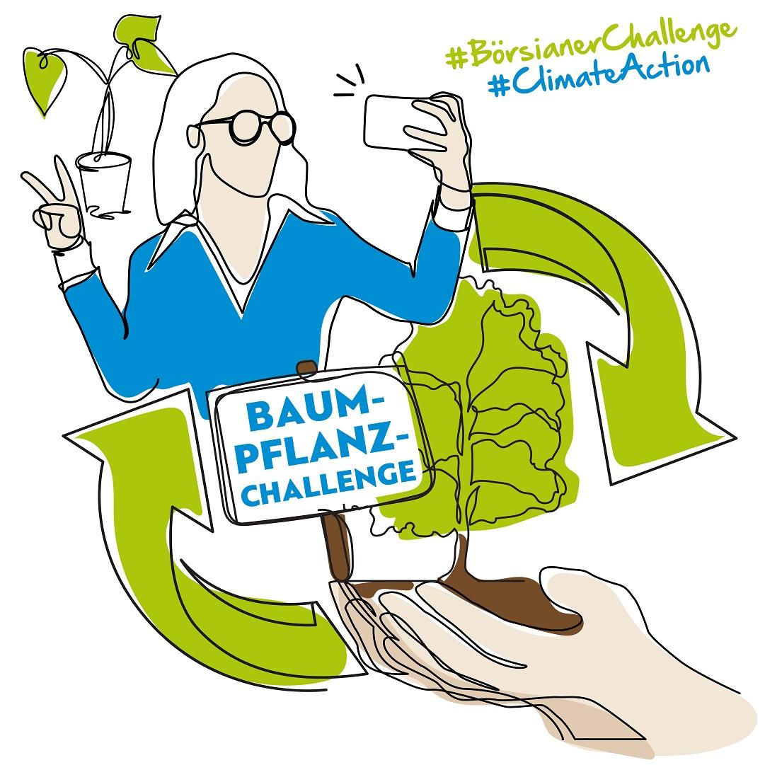 Boersianer Baum Pflanz Challange Edition gruen